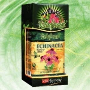 RainForest® Echinacea 500 mg  / 90 tbl.